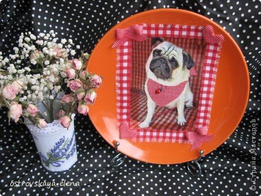 Сегодня хочу поделиться с Вами тем, как я делаю приспособления на декоративных тарелочках для крепления их к стене.... фото 3