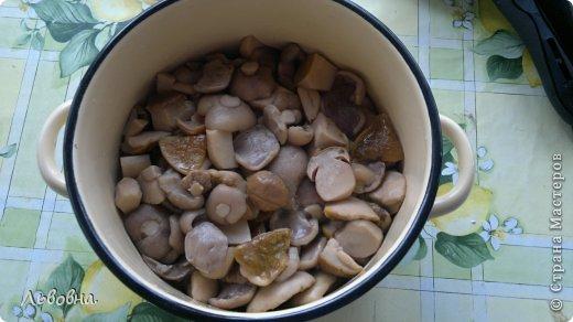 Кулинария Мастер-класс Рецепт кулинарный Маслята соленые Готовимся к зиме Продукты пищевые фото 7