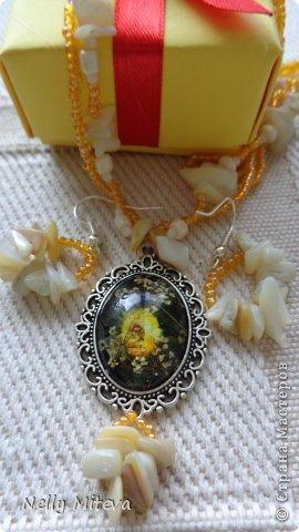 Наборы бусин, сухих цветов и бисером фото 4