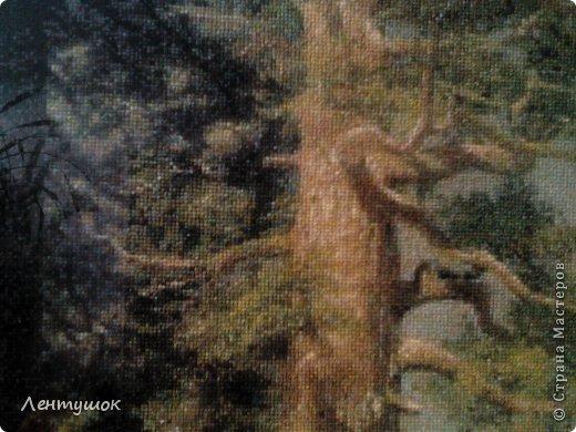 """Добрый день, жители Страны Мастеров! На ваш суд вышитая картина """"Большие деревья"""". Вышивалась по схеме Goldenkite, ее размеры: ширина 55 см, высота - 113 см. Вышивалась 2,5 года. Я как-то прикинула, и получилось, что работая над этой картиной, я вышила 186,6 тысяч крестиков! фото 3"""