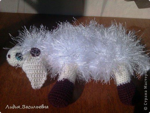 Муж сказал, что это не овца!)))) фото 2