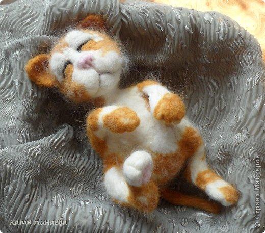 всем привет, во такой рыжик у меня получился, а вот ссылочка на МК http://yulia-yu-yu.livejournal.com/15428.html, мне очень понравился котенок в МК, очень захотелось попробовать его сделать, конечно, у меня не получилось так красиво фото 1