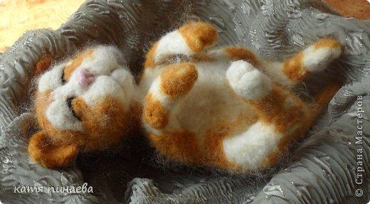 всем привет, во такой рыжик у меня получился, а вот ссылочка на МК http://yulia-yu-yu.livejournal.com/15428.html, мне очень понравился котенок в МК, очень захотелось попробовать его сделать, конечно, у меня не получилось так красиво фото 2