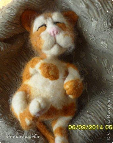всем привет, во такой рыжик у меня получился, а вот ссылочка на МК http://yulia-yu-yu.livejournal.com/15428.html, мне очень понравился котенок в МК, очень захотелось попробовать его сделать, конечно, у меня не получилось так красиво фото 4