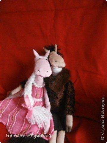 """Подарок к Новому 2014 году """"Конь в пальто и кабыла в манто' фото 4"""