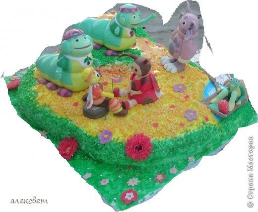 Здраствуйте. Вот такой торт Нина  сама приготовила   для своей доченьки Насте на 2 годика. фото 3