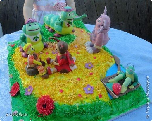 Здраствуйте. Вот такой торт Нина  сама приготовила   для своей доченьки Насте на 2 годика. фото 6