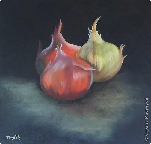 Картины маслом, академический рисунок фото 1