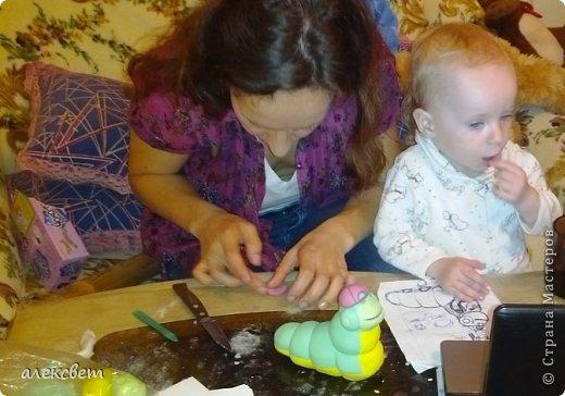 Здраствуйте. Вот такой торт Нина  сама приготовила   для своей доченьки Насте на 2 годика. фото 17