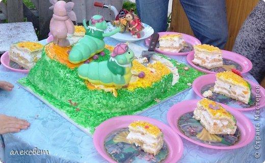 Здраствуйте. Вот такой торт Нина  сама приготовила   для своей доченьки Насте на 2 годика. фото 10