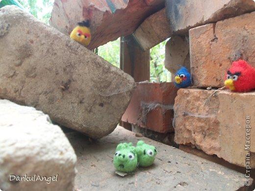 Angry Birds фото 3