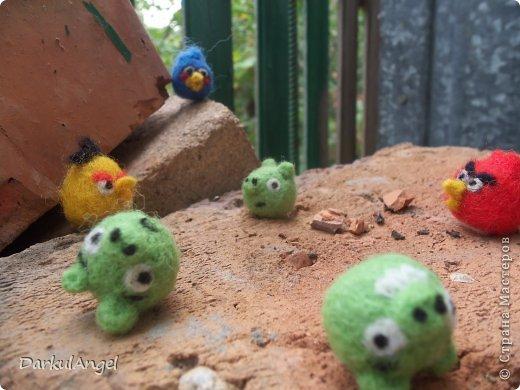 Angry Birds фото 4
