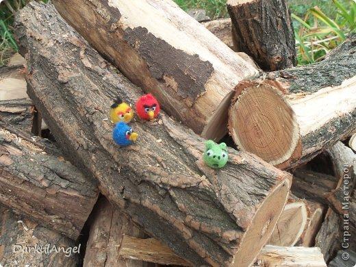 Angry Birds фото 8