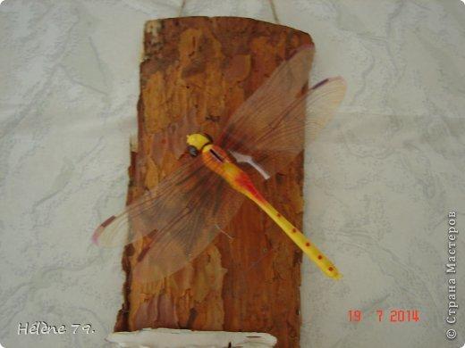 """""""На дворе - трава, на траве - дрова, Раз дрова, два дрова, три дрова, Дрова вдоль двора, дрова вширь двора, Не вместит двор дров, Надо дрова выдворить со двора обратно!"""" Вот и я подумала, дорогие соседи, что дров моему свёкру многовато будет и решила облегчить ему работу :) К тому же, как пройти мимо такой красоты: такие дровишки фактурные! Из них и родились такие """"экопанно"""" на скорую руку. фото 4"""