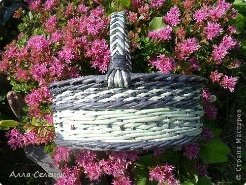 Поделка изделие Плетение Мои корзинки Бумага газетная Трубочки бумажные фото 7