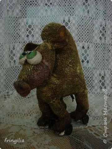 Верблюд Верблюдович фото 3