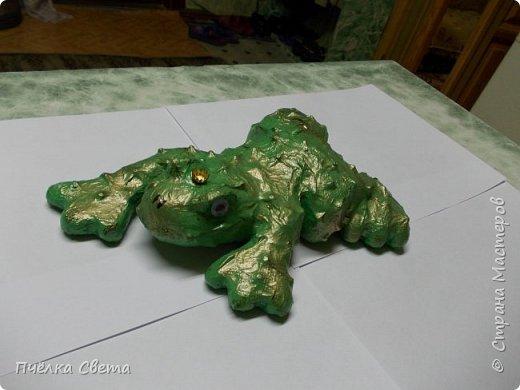 Лягушка-Царевна) фото 1