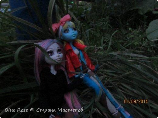 Вечер первого дня прогулок. Роу и Лагуна Роу (кукла Светы Волка) Ходили вместе со Светой она тоже фоткала. фото 1