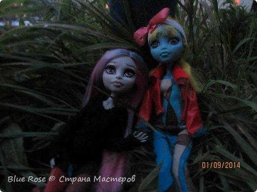 Вечер первого дня прогулок. Роу и Лагуна Роу (кукла Светы Волка) Ходили вместе со Светой она тоже фоткала. фото 2