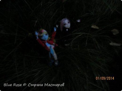 Вечер первого дня прогулок. Роу и Лагуна Роу (кукла Светы Волка) Ходили вместе со Светой она тоже фоткала. фото 4