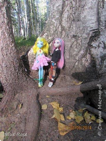 Вечер первого дня прогулок. Роу и Лагуна Роу (кукла Светы Волка) Ходили вместе со Светой она тоже фоткала. фото 14