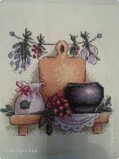 Здравствуйте все! Хочу вам показать свои вышивки... 1-я вышивка для кухни, которую вышивала для крестной.. фото 1