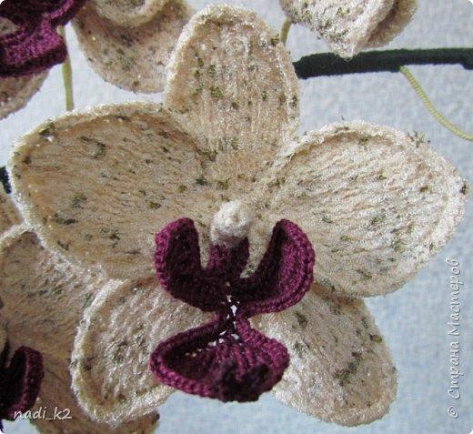 И еще орхидея фото 4