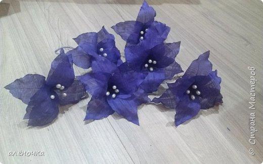 Была свадьба в фиолетовых тонах,нехватало нескольких цветов для фиолетовых пятен на белых шарах.вот и придумались эти лилии фото 1
