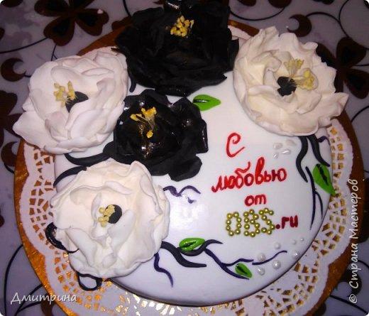 Здравствуй, Страна! Налепила тортиков, решила похвастаться. Заказчикам понравилось.  Торт с цветами. Вес 2,2 кг. Внутри рафаэлло. фото 1
