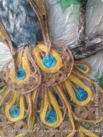 Картина панно рисунок Аппликация Ассамбляж Моделирование конструирование Шитьё Павлин-джутовая филигрань и   Бумага Бутылки пластиковые Клей Краска Материал бросовый Проволока Ткань Шпагат фото 7