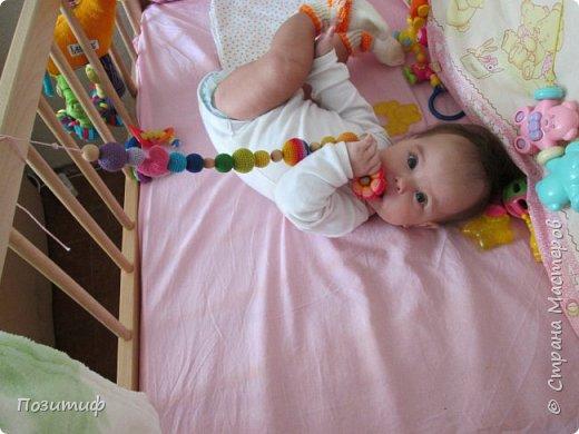 Любимые грызунки моей доченьки фото 3