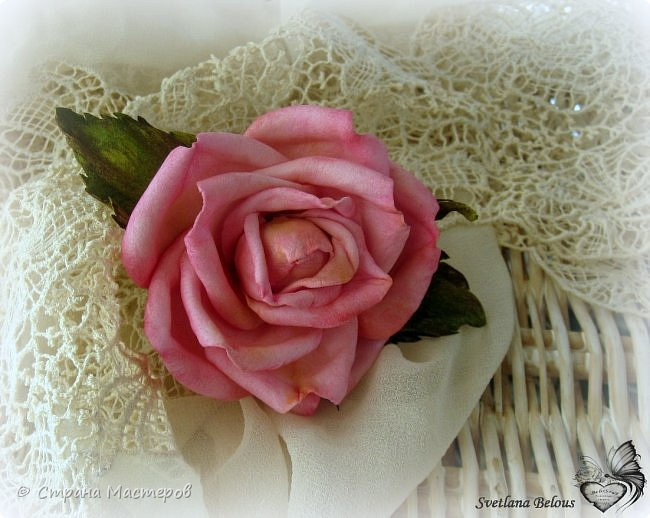 Роза-обаяшка... фото 4