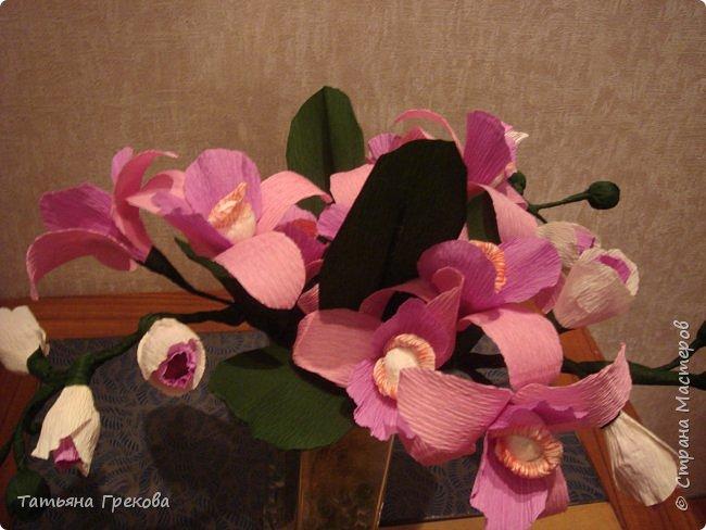 Орхидея фото 2