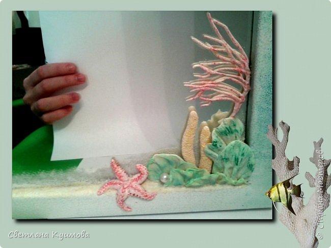 """Как поется в известной песне: """"Море..море..""""  Теперь в нашей ванной комнате есть кусочек моря, точнее маленький коралловый риф. фото 3"""