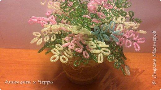 Кустик сделан на день рождения бабушки :) фото 4