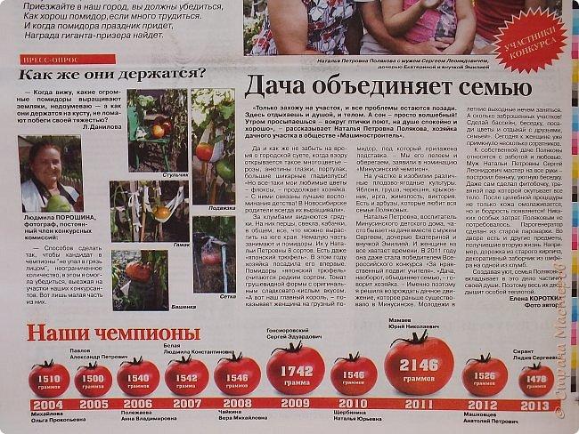 """Доброе утро, страна! В прошлом году я вам подробно рассказывала о проводимом в нашем городе Дне Помидора https://stranamasterov.ru/node/620492. В этом году у меня, к сожалению, не было возможности заснять костюмированное шествие и выставку урожая, но мы хорошо поработали с детками на мастер-классе """"Веселый хоровод"""". Вот такая клумба получилась! фото 6"""