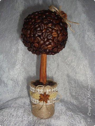 Кофеюшки, которые готовились на выставку. Классическое кофейное дерево, стволик - палочка корицы, декор горшочка - шпагат, кружево, тесьма, бадьян. фото 1