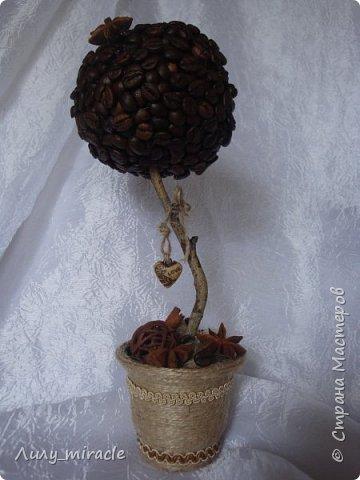 Кофеюшки, которые готовились на выставку. Классическое кофейное дерево, стволик - палочка корицы, декор горшочка - шпагат, кружево, тесьма, бадьян. фото 5