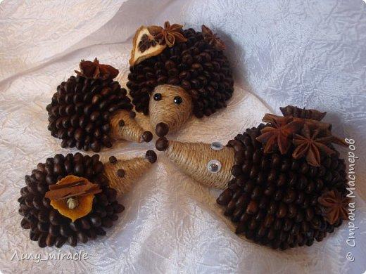 Кофеюшки, которые готовились на выставку. Классическое кофейное дерево, стволик - палочка корицы, декор горшочка - шпагат, кружево, тесьма, бадьян. фото 12