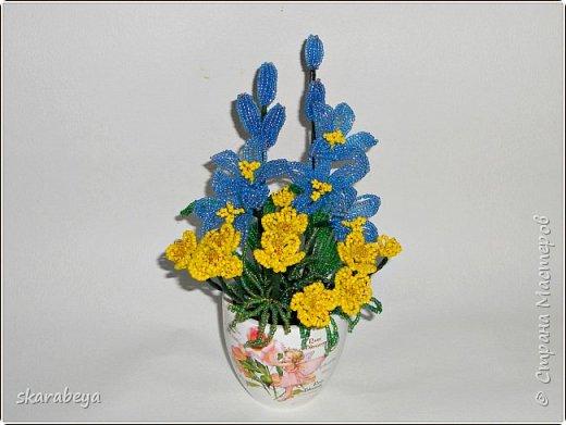 Доброго всем дня! Вот накопилось у меня немножко свежих цветов... фото 4