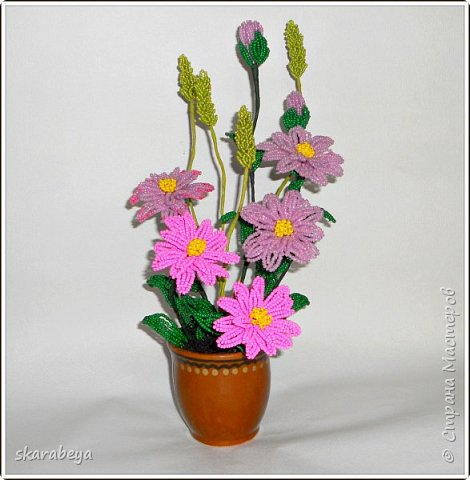 Доброго всем дня! Вот накопилось у меня немножко свежих цветов... фото 5