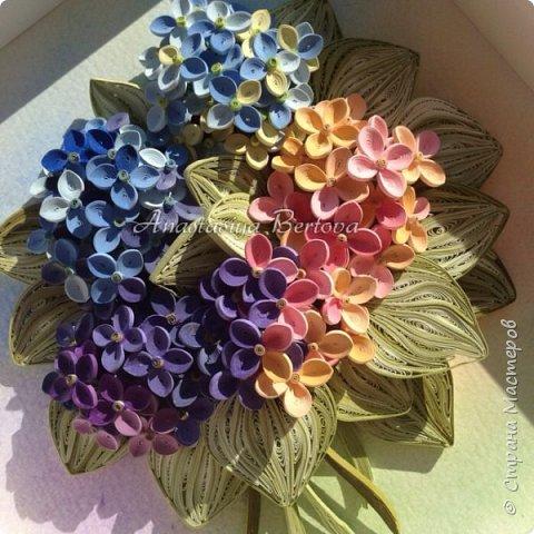 Всем доброго времени! Сегодня у меня гортензия. Много маленьких разноцветных цветочков, собраны в маленький яркий букетик. Для цветочков использовала полосочки 1,5 мм 14-ти оттенков. Для листьев: полосочки 3 мм 3-х оттенков.  Формат 23*23 см, фон - сухая пастель. фото 1