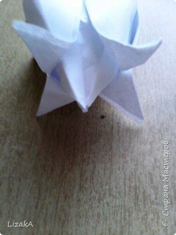 """Привет всем,кто заглянул ко мне в гости! :) Это мой 1 блог)) Однажды на одной сайте(не помню на каком) я увидела:""""Как сделать цветок из бумаги?"""" Делается в технике оригами,только нам понадобятся ножницы :) фото 12"""
