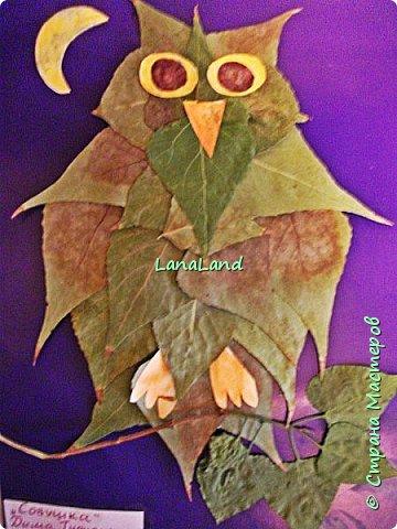 """наши очередные аппликации на конкурс в сад,правда листьев желтых на улице практически нет,поэтому сова у нас """"летняя"""")))делали с сынулей (3 года 3 месяца),и вдохновляля нас ляля в животике))))))))) фото 2"""