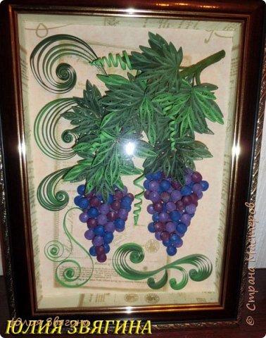 Виноград фото 5