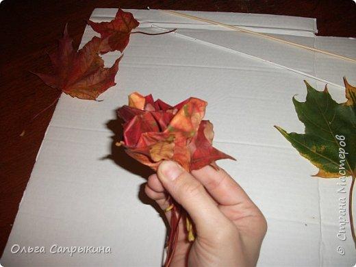 Давно слышала что делают розы из кленовых листьев,вот захотела сама попробовать,начала искать МК в инете. то что нашла не очень меня устроило,поэтому долго крутила-вертела сама....и вот что навертела.В стране Мастеров уже есть МК роз из кленовых листочков,но розы там получаются совершенно другие.Может кому нибудь пригодятся мои наработки. именно такого вида розы(пышные) получаются из листьев мелкого и среднего размера. Из очень крупных листочков почему то не получается именно такой вид. фото 16