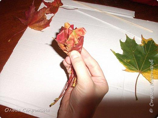 Давно слышала что делают розы из кленовых листьев,вот захотела сама попробовать,начала искать МК в инете. то что нашла не очень меня устроило,поэтому долго крутила-вертела сама....и вот что навертела.В стране Мастеров уже есть МК роз из кленовых листочков,но розы там получаются совершенно другие.Может кому нибудь пригодятся мои наработки. именно такого вида розы(пышные) получаются из листьев мелкого и среднего размера. Из очень крупных листочков почему то не получается именно такой вид. фото 17
