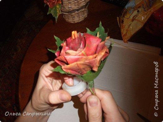 Давно слышала что делают розы из кленовых листьев,вот захотела сама попробовать,начала искать МК в инете. то что нашла не очень меня устроило,поэтому долго крутила-вертела сама....и вот что навертела.В стране Мастеров уже есть МК роз из кленовых листочков,но розы там получаются совершенно другие.Может кому нибудь пригодятся мои наработки. именно такого вида розы(пышные) получаются из листьев мелкого и среднего размера. Из очень крупных листочков почему то не получается именно такой вид. фото 21