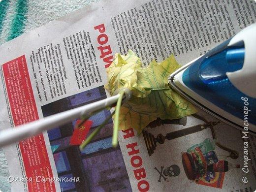 Давно слышала что делают розы из кленовых листьев,вот захотела сама попробовать,начала искать МК в инете. то что нашла не очень меня устроило,поэтому долго крутила-вертела сама....и вот что навертела.В стране Мастеров уже есть МК роз из кленовых листочков,но розы там получаются совершенно другие.Может кому нибудь пригодятся мои наработки. именно такого вида розы(пышные) получаются из листьев мелкого и среднего размера. Из очень крупных листочков почему то не получается именно такой вид. фото 23