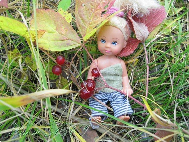 Добрый вечер!(а у кого - то день :D )Сегодня был довольно хороший денек, и мы ездили в осенний лес!Как же там красиво))))Я взяла с собой Марту, как раз сшились штанцы и топ! Шишечку нашла :) их там очееньь много :) фото 7